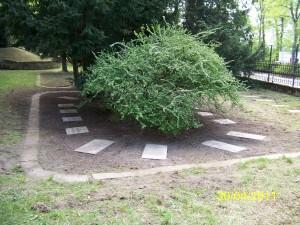 Der Nordflügel des Sowjetischen Garnisonfriedhofes nach einem Arbeitseinsatz des Freundeskreises